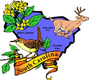 South Carolina-licensed Counselors and MFTs license renewal deadline: August 31, 2011.