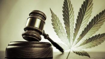 Implications of Legalized Marijuana